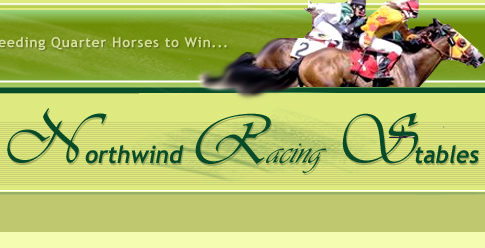 North Wind Racing Stables